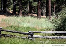 Photograph Of Rustic Wooden Fence