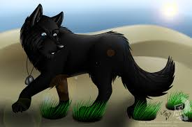 anime black wolf with blue eyes. Fine With Black Wolf Pup With Blue Eyes  Photo27 On Anime Wolf With Blue Eyes K