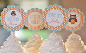 Baby Shower Spring Owl Cupcake Toppers Printable File For Little Baby Shower Owl Cake Toppers