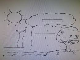 water cycle essay assessment plan grade jbilenler jbilenler wordpress com water cycle diagram