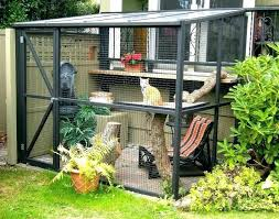 cat outdoor house cat outdoor house outdoor cat kennel its a a tour led by the