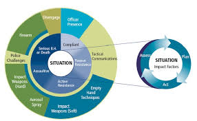 Use Of Force Models Comprehension Or Confusion Crisis Pulse