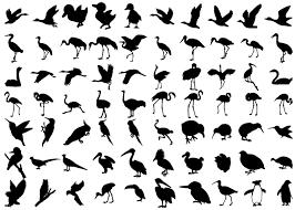 鳥のシルエット素材集鳥類イラストのフリーダウンロード素材
