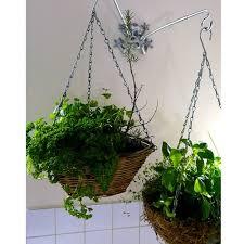 indoor hanging plants telstraus