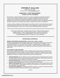 Resume Profile Summary New Template Resume Objective For Caregiver
