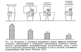 Межвидовая конкуренция Курсовая работа страница  Очевидно что на рост растений большое влияние оказывает как надземная так и подземная конкуренция