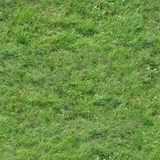 tall grass texture seamless. Seamless Texture With Green Grass Of Inconsistent Length And Density. Tall N