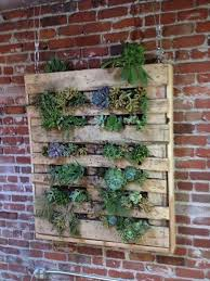vertical garden pallet planter
