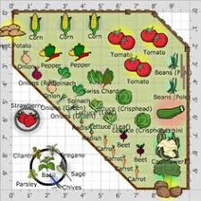 basic vegetable garden. vegetables garden plan don\u0027t forget to subscribe : http://www. basic vegetable