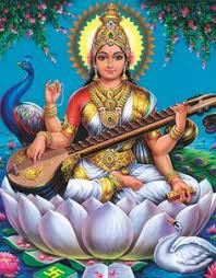 ON THE PRETTY PETALS OF THE WHITE LOTUS! (10) வெள்ளைத் தாமரை.......