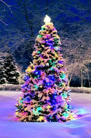 christmas trees decorated outside snow.  Decorated Decorated Christmas Tree Outside With Lights Covered Snow Stock Photo   2368515 Intended Christmas Trees Outside Snow 123RFcom