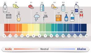 Alkaline Ph Level Chart Alkaline Water Benefits Plus Dangers And Scams Water