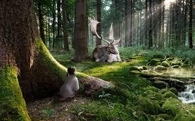 Cool Forest Backgrounds Desktop Enchanted Forest Wallpaper Cool
