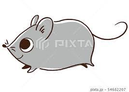 ネズミ 子 干支 動物のイラスト素材 Pixta