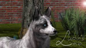 Canine on Sims-3-Photography - DeviantArt