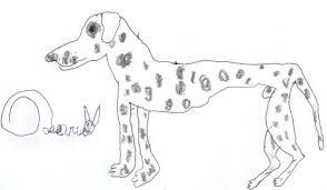 Disegni Fatti Da Bambini Con Immagini Di Cani Disegnati E Dalmata Di