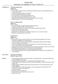 Webmaster Resume Samples Velvet Jobs