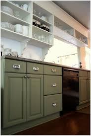 Olive Green Kitchen Cabinets Kitchen Olive Green Kitchen Cabinets Kitchen With Red Walls