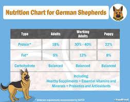 20 Best Dog Foods For German Shepherd Gs Puppies In 2019