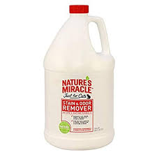 nature s miracle just for cats stain and odor remover gallon 515804