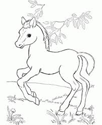 Small Picture Baby Horse Coloring Pages Free Printable Horse Coloring Pages For
