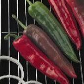 garden salsa hot pepper garden salsa