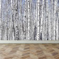wall mural white birch trees l and stick repositionable fabric wallpaper for interior home decor