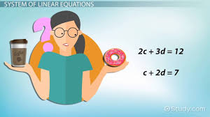 system of linear equations definition examples lesson transcript study com