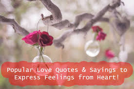 Love Quotes And Sayings Fascinating Popular Love Quotes Sayings To Express Feelings From Heart