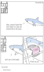 best images about fintastic mega shark funny we train dolphins to help us so why not sharks whynotsharks