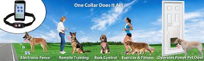 new bluefang 5 in 1 smart phone super collar
