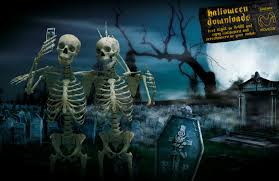 Horror Skeleton Wallpapers 48 Pictures