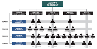 Project Team Structure Chart Advertising Agency Organization Advertising Agency
