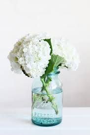 blue ball mason jar - I just got a bunch of blue mason jars . we use them  to hold flowers around the party