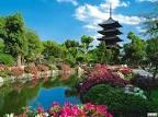 Фото садов в японии