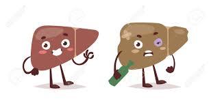 「肝硬変症」の画像検索結果