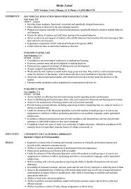 Paraeducator Resume Example Paraeducator Resume Samples Velvet Jobs 13
