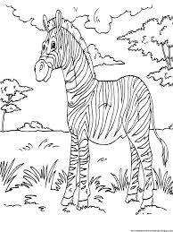 Small Picture 70 best the big five images on Pinterest Coloring books Animal