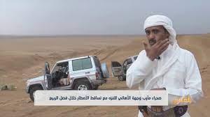 صحراء مأرب وجهة الأهالي للتنزه مع تساقط الأمطار خلال فصل الربيع   تقرير:  عبد الله القادري - YouTube