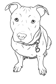 pitbull dog face drawing. Beautiful Drawing Image Result For How To Draw A Pitbull Face For Pitbull Dog Face Drawing