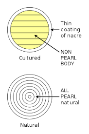Pearl Wikipedia