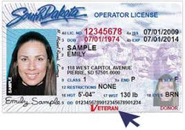 Designation - Health Black Drivers Care System On Va License Veteran Hills