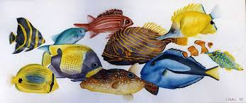 waterlife watercolor paintings tropical fish