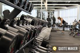 Beginners Guide To Free Weights