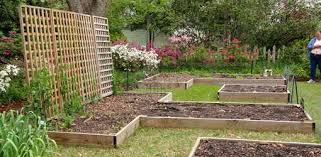 garden planting. advantages of raised planting beds for your garden