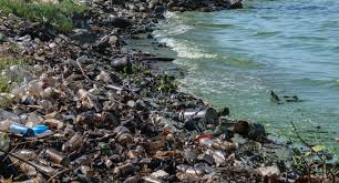 words essay on water pollution to water pollution