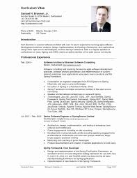 Curriculum Vitae Templates Latex Resume Format Awesome Resume Curriculum Vitae Example Resume 18