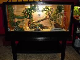 gail s homemade reptile enclosure and stand