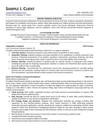 Senior Financial Executive Resume