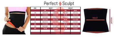 The Perfect Sculpt Size Chart Size Charts For The Perfect Fit The Perfect Sculpt